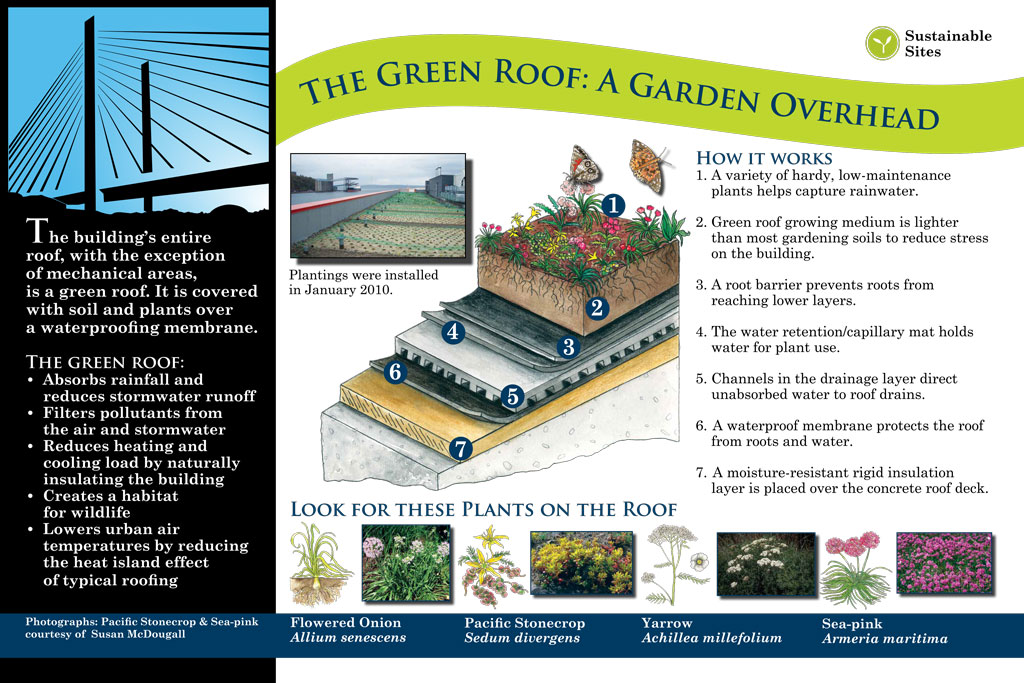 interpretive signage: green roof